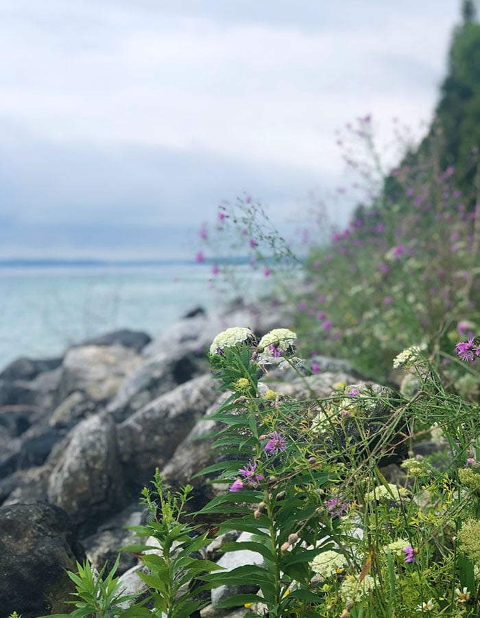 Mackinac Island shoreline